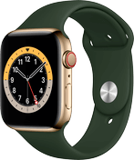 Apple Watch 6 rustfritt stål gull 44mm
